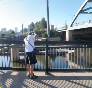 Fishing From Bridge