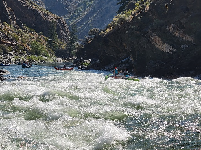 Rapid Middle Fork Salmon